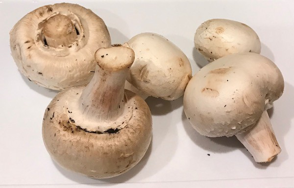 5 whole mushrooms