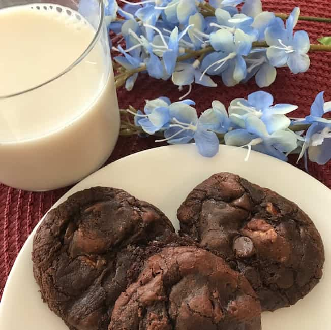Pecan Brownie Cookies and Milk